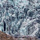 Fox Glacier by Alex Preiss
