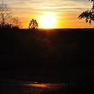 Golden hour  by mltrue
