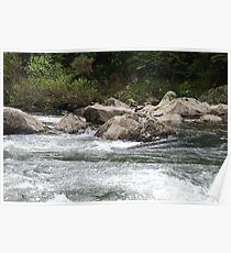 Rocks and Rapids Poster