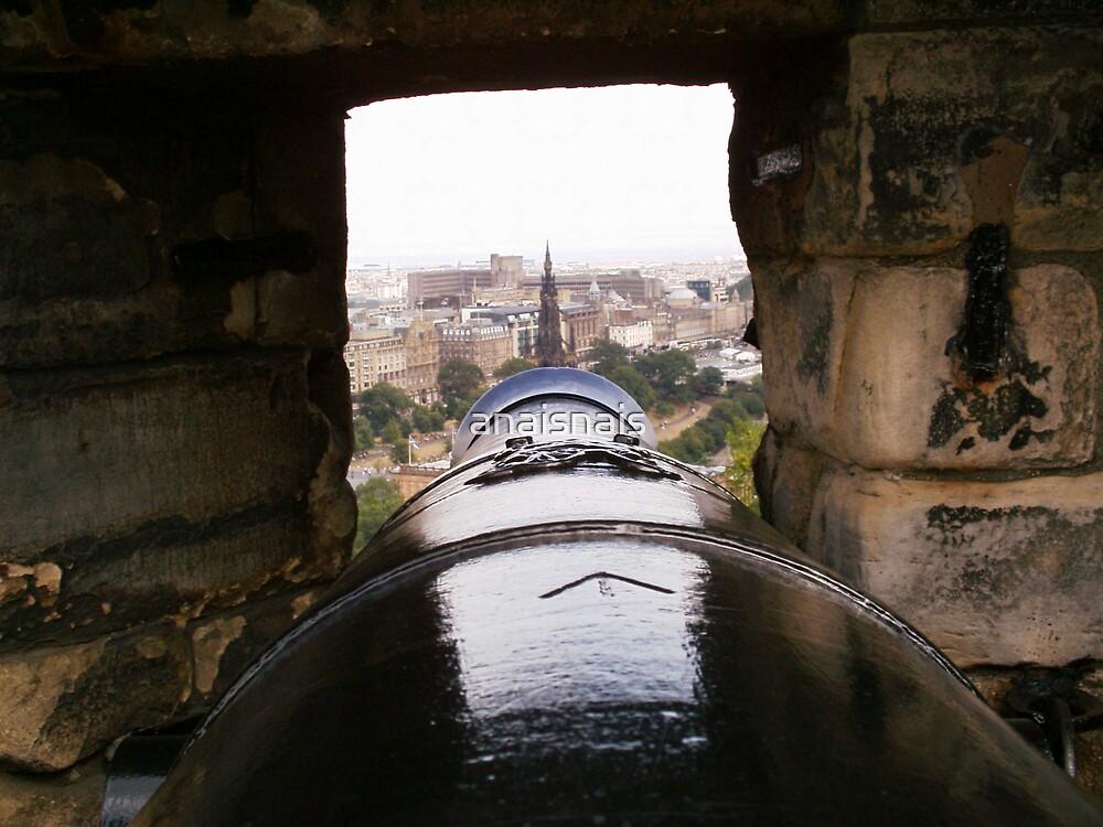 Mons Meg - Edinburgh Castle/View through of City by anaisnais