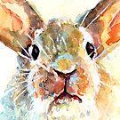 Bunny by pamfox