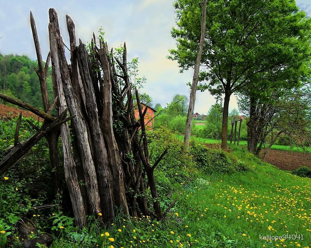 Sticks by kalliope94041