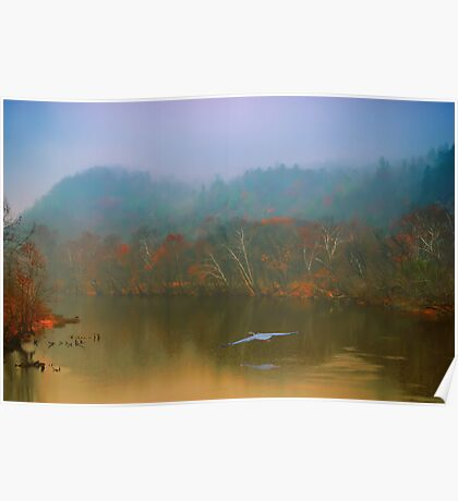 Great Blue Heron on a Misty Day Poster