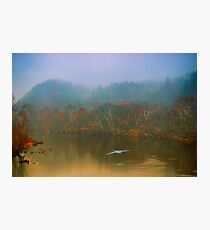 Great Blue Heron on a Misty Day Photographic Print