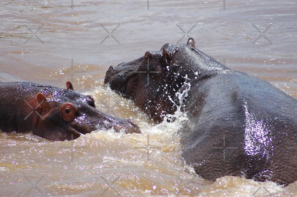 Hippo Bathtime by ApeArt