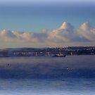 View to Bideford by Charmiene Maxwell-Batten