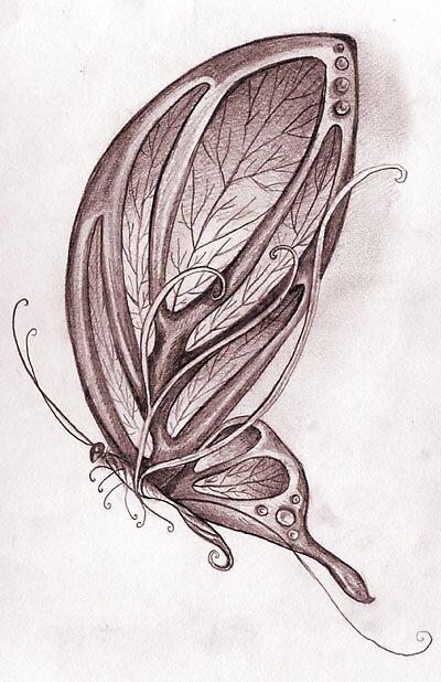 pencil butterfly sketch by Butterflyjenny