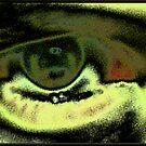 Silver Eye by XtomJames