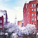 New York City Cherry Blossoms by Vivienne Gucwa