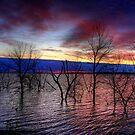 Sunrise on Devil's Lake, USA by Larry Trupp