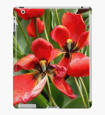 Red, black and yellow tulips iPad Case/Skin