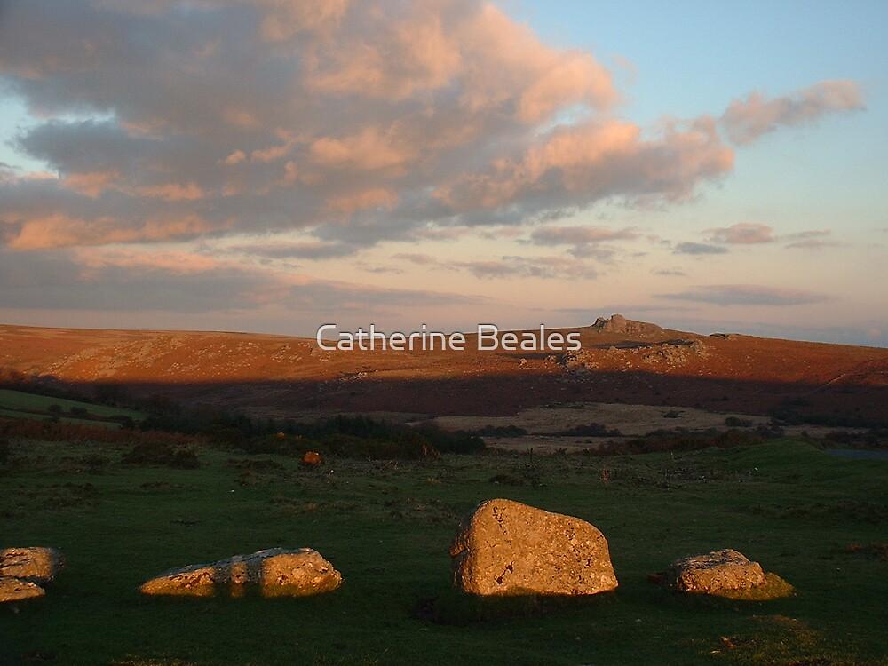 dartmoor by Catherine Beales