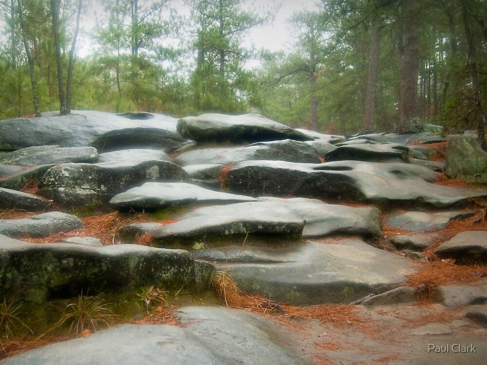 Rocks in Fog by Paul Clark
