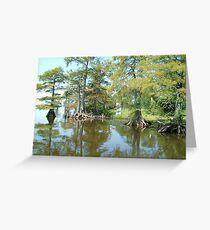 Louisiana bayou Greeting Card