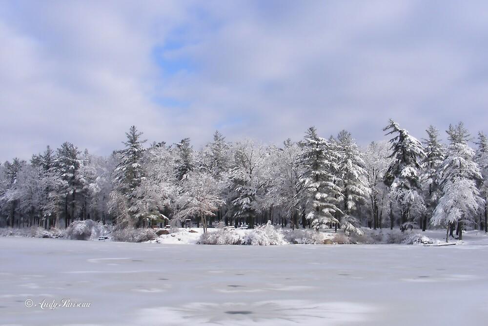 Sticky Snow 34 by Andy2302