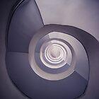 Spiral staircase in plum tones by JBlaminsky