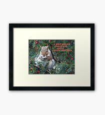 Squirrel in Rowan Tree in York.  Framed Print