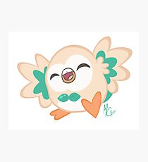 Happy Rowlet! Photographic Print