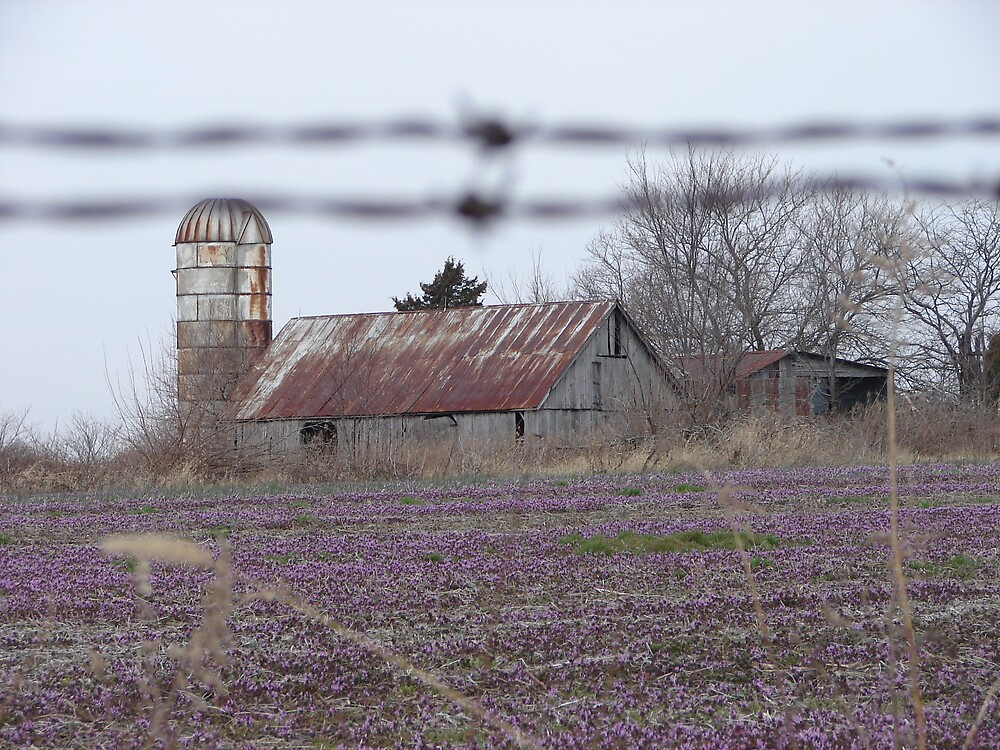 Silo and Barn on Highway E by inventor