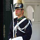 Portuguese National Republican Guard by wiggyofipswich
