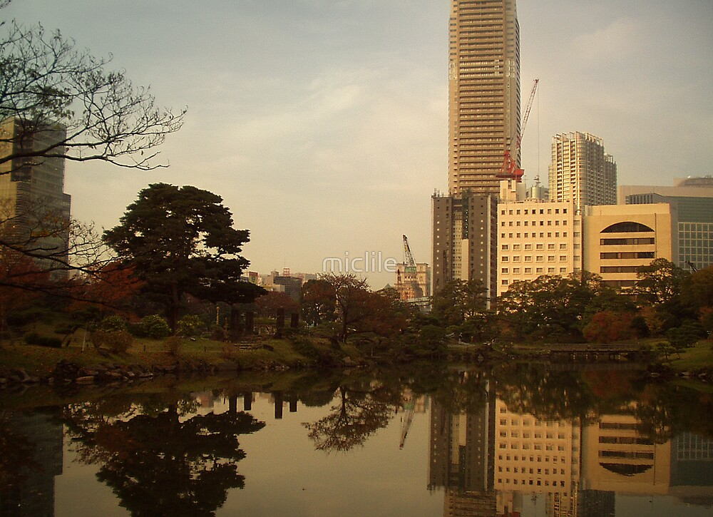 Tokyo Reflections by miclile