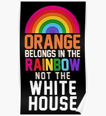 ORANGE BELONGS IN THE RAINBOW NOT THE WHITE HOUSE Poster