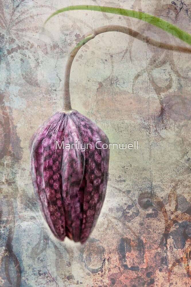 In the Garden of Alice by Marilyn Cornwell