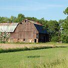The barn by cherylc1