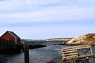 Peggy's Cove, NS (1) by Darlene Ruhs