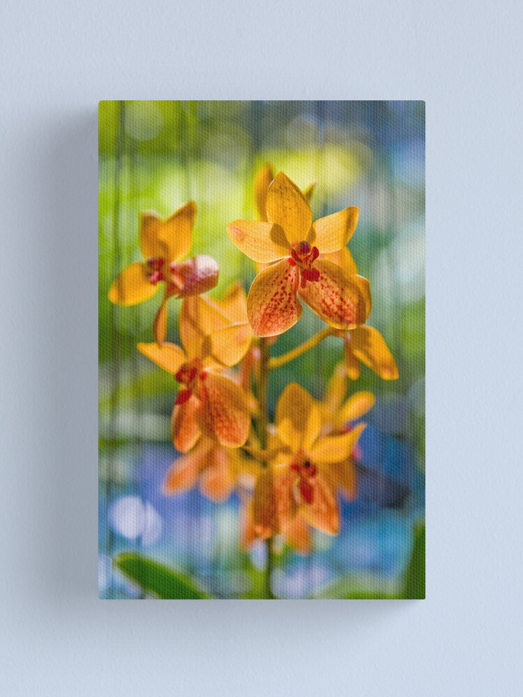 Alternate view of Orchidees flottantes  Canvas Print