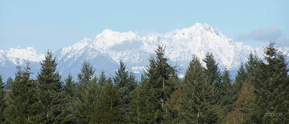 Olympic Mountains by Jonice