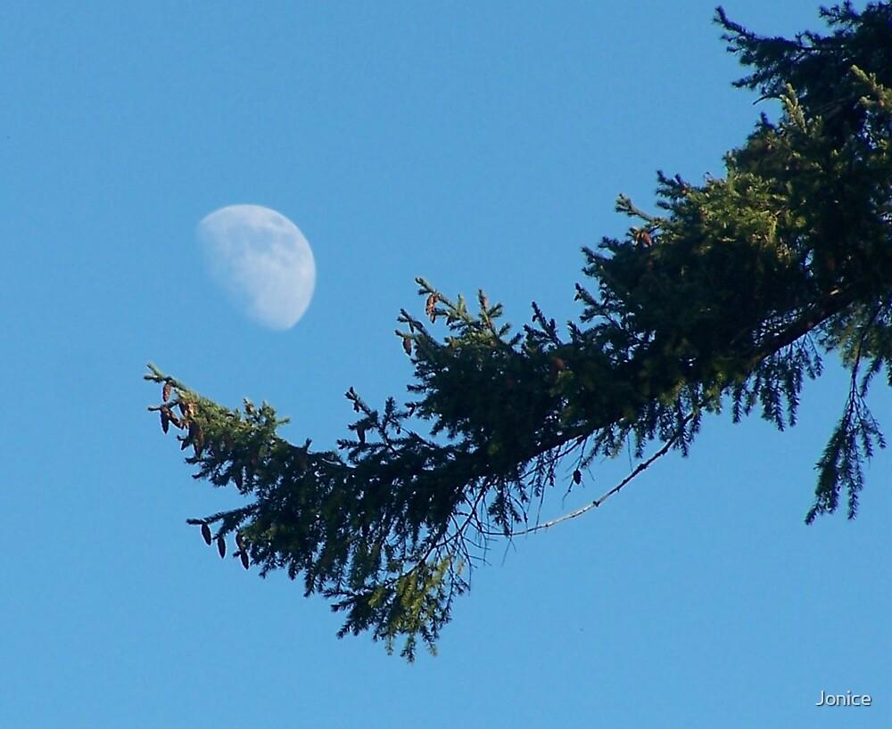 Daytime Moon by Jonice