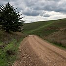 Forbes Road by mspfoto