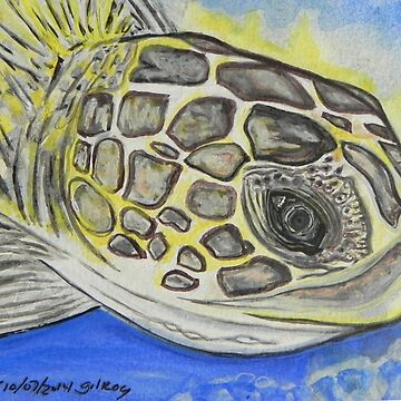 Sea Turtle Art ... t40 by whiteygilroy