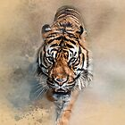 Sumatran Prowler by Tarrby