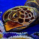 Sea Turtle Art ... t55 by whiteygilroy