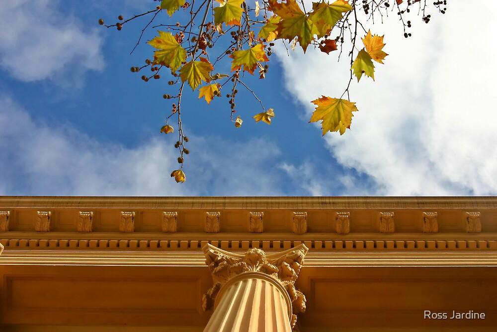 Autumn Column by Ross Jardine