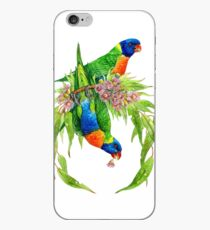 Regenbogen Lorikeets iPhone-Hülle & Cover