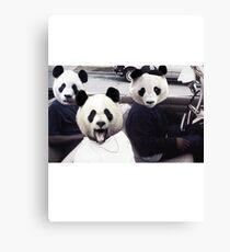 PANDAS IN THE HOOD Canvas Print