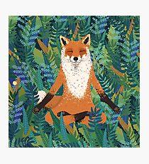 Fox Yoga Photographic Print