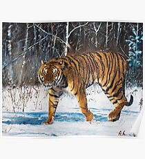 """Oil painting """"The tiger"""" Poster"""