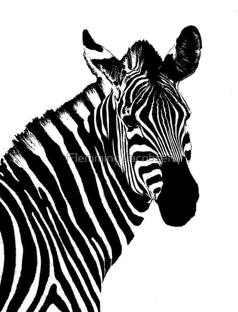 Zebra abstract I by Flemming Jacobsen