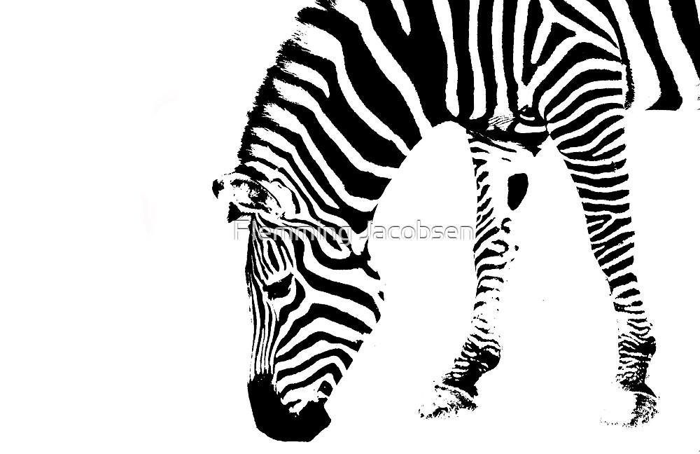 Zebra abstract II by Flemming Jacobsen