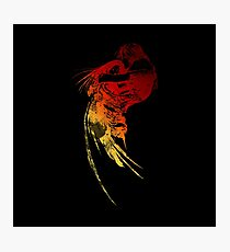 Final Fantasy VIII logo grunge Photographic Print