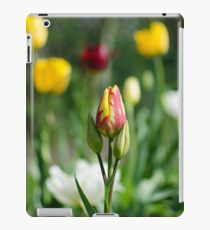 Red and Yellow Tulips Photograph iPad Case/Skin