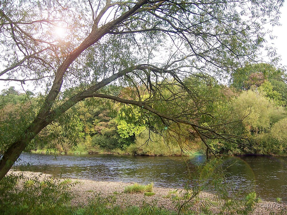 River Tyne, Mickley, Northumberland by caty76
