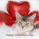 Misty's valentine 2 by sarahnewton