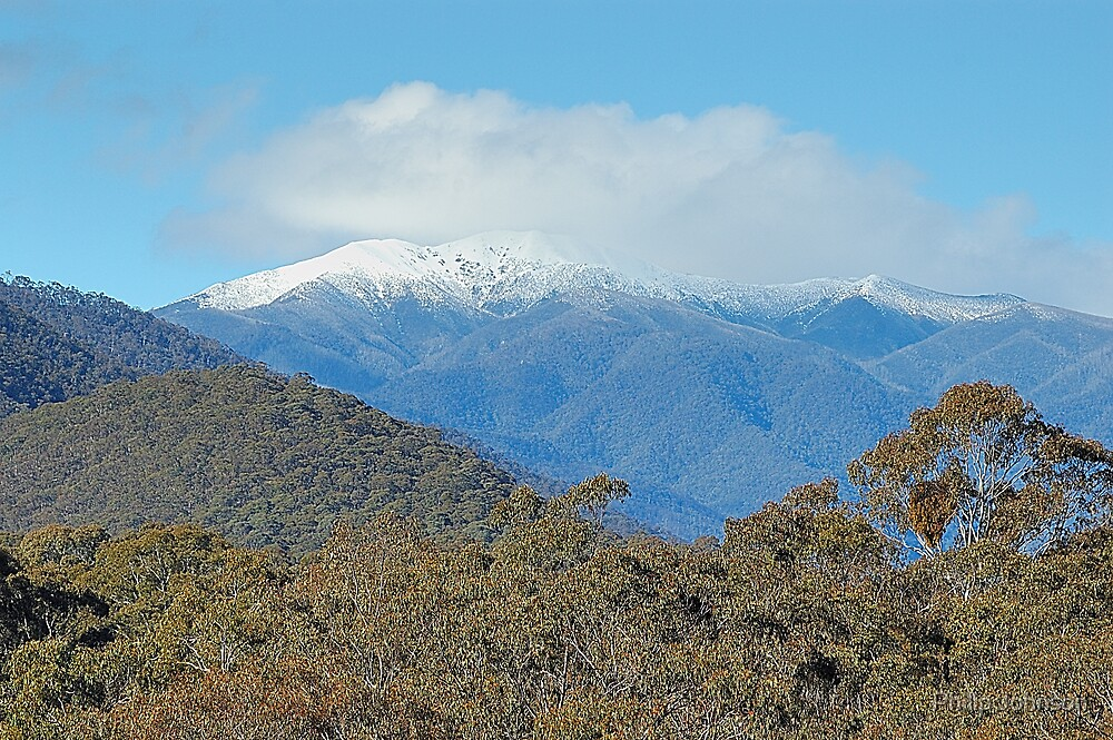 Mount Hotham Views - Victorian Alps National Park ,Victoria Australia by Philip Johnson