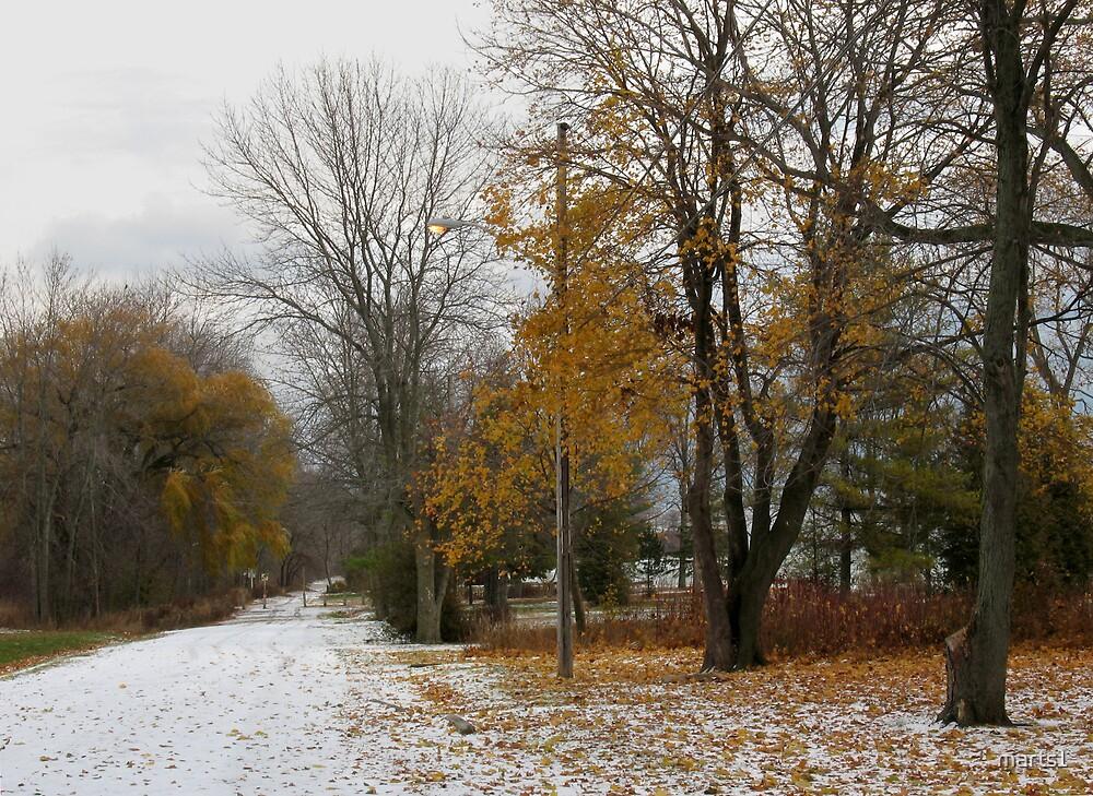 A Winter Scene by marts1
