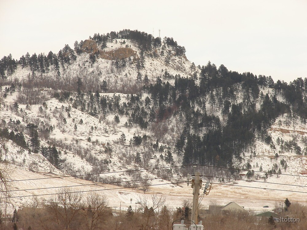 A Veil Of Snow On Lookout Mountain by eltotton